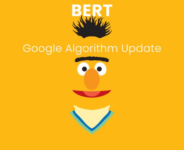 BERT-UPDATE-2019